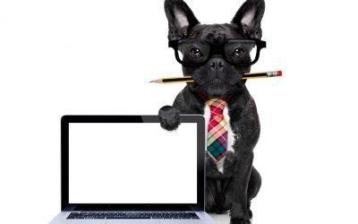 6 Tips on How to Write Better Senior Living Website Copy